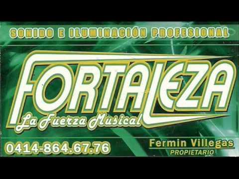 mezcla de salsa fortaleza 2012.wmv