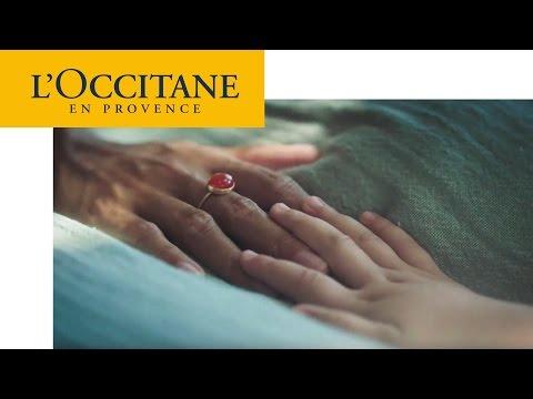 Caring – Shea Butter Hand Cream | L'Occitane
