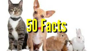 50 Cool Surprising Facts about Animals!