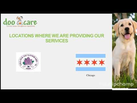 Elmhurst and Naperville Dog Poop Removal Services