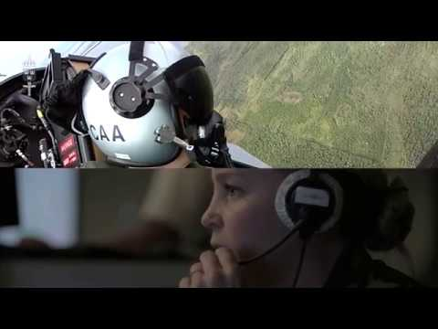 Flygstridsledare i Flygvapnet
