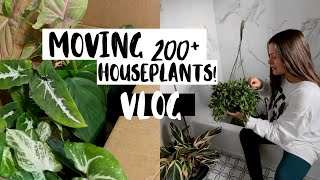 Moving Homes with 200+ Houseplants Vlog! | Moving with Indoor Plants!