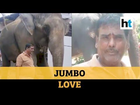 Bihar man willed his property worth 5 crore to his elephants