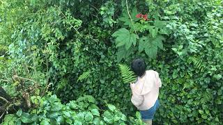 Nhạc trẻ Ballad Việt hay nhất Nhạc trẻ acoustic và cover chọn lọc 2018