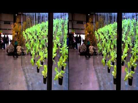 Deus Ex Homine 3D