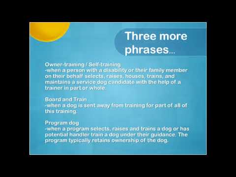 Introduction to Self Training a Service Dog or Assistance in The US and Canada Part 1