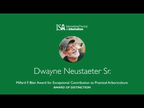 2019 Awards of Distinction | Dwayne Neustaeter