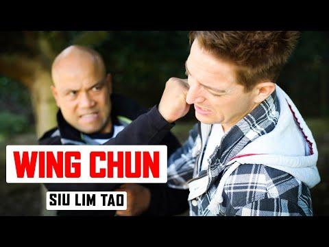 Wing Chun Sil Lim Tao ✅