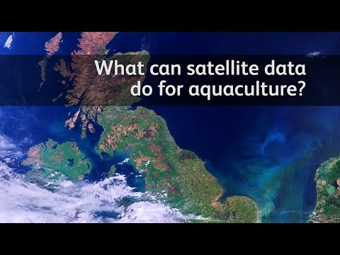 What can satellite data do for aquaculture?
