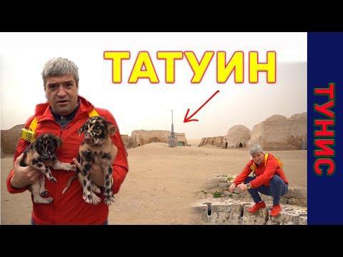 Планета Татуин. Декорации к Звездным войнам. Собака-леопард. Как разводят туристов в Тунисе