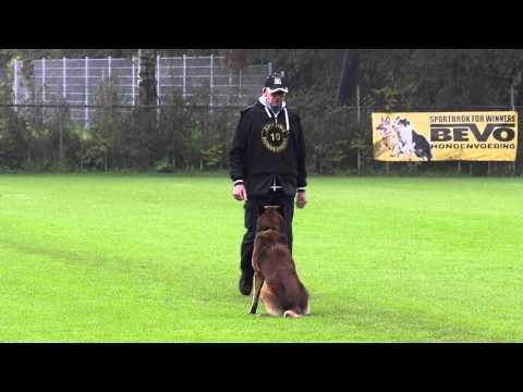 NIK 2015  Roelof Kroezen Iwan van de Duvetorre Obedience