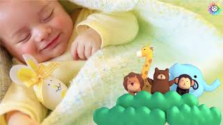 Itsy Bitsy Spider Lullaby: Baby Sleep Music, Relaxing Lullaby for Babies, Bedtime Music