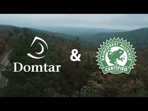 Domtar & Rainforest Alliance: 20 Years and Counting - Follow The Frog