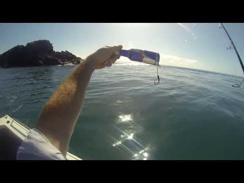 Fishing with Red bull! HD