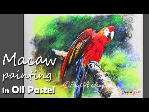 How to Paint Macaw Bird in Oil Pastel