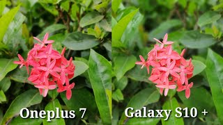 Oneplus 7 vs Galaxy S10 + Camera Comparison