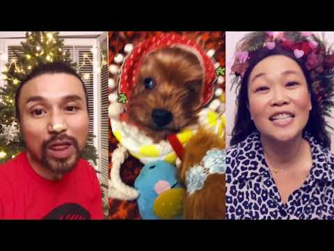 A Christmas Message (Puppies Are Forever - Sia)