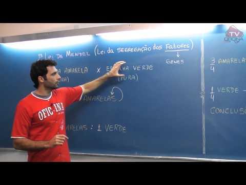 Dica de Biologia - 1ª Lei de Mendel