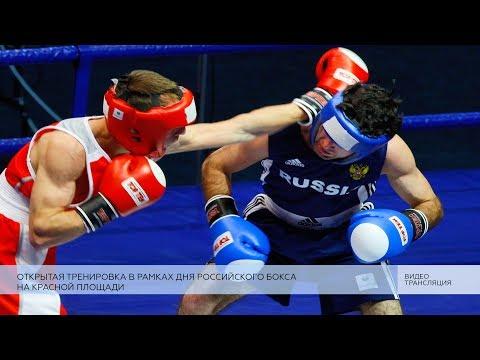 Празднование Дня российского бокса 1440