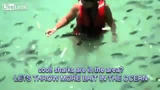 サメが女性の手に飛びつく