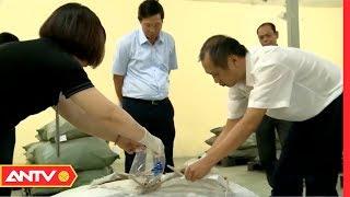 Công ty CP Dược liệu Nam Yên qua mặt đoàn kiểm tra thế nào? (P1) | Điều tra | ANTV