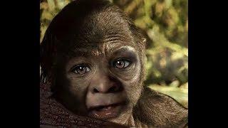 World Bigfoot Radio #31 ~ Hunter helps orphan Bigfoot/Glagg saga pt. 1/Kevin