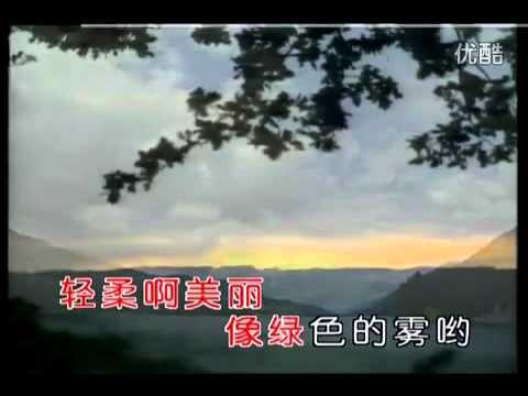 彭麗媛-月光下的鳳尾竹--中國第一夫人