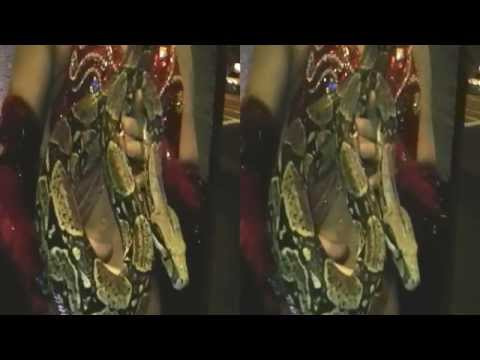Woman holding Snake 3D (YT3D:Enable=True)