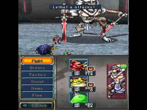 Dragon quest monsters joker 2 professional english patched wii