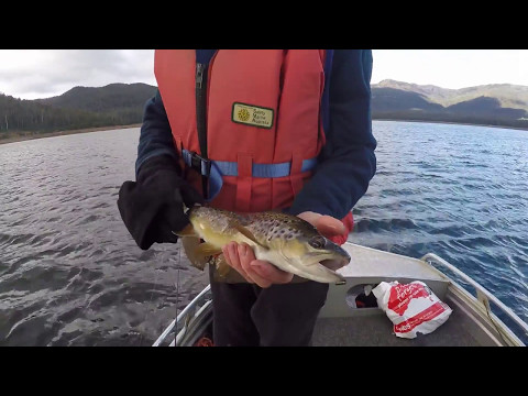 Huntsman Lake Trout