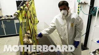 (NSFW) Reviving the Dead With DIY Forensics: Still Life (Full Documentary)