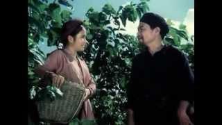 Hoàng Hoa Thám 1-Thủ Lĩnh Áo Nâu (1987)