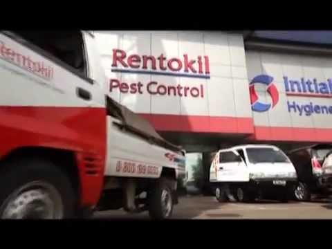 rentokil.flv