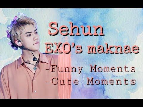 Sehun  EXO's Maknae