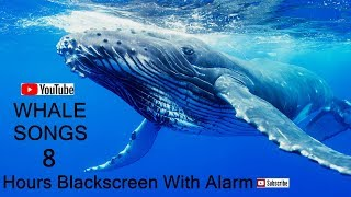 whale songs 8 hours  black screen no music with alarm