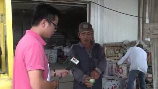 Triệu phú nông dân Việt tại Mỹ
