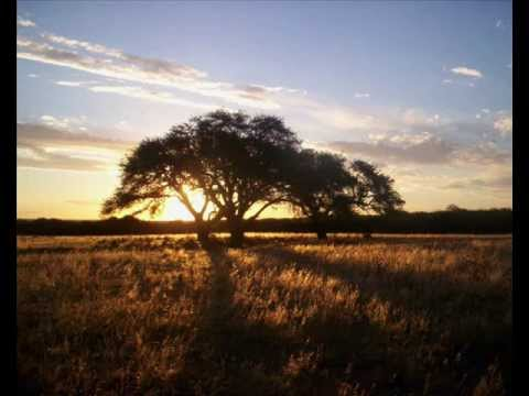 Argentino Luna - Ando por la huella