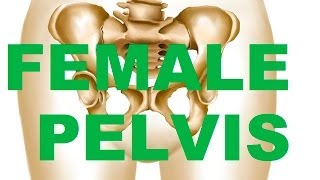 Female Bony Pelvis Types - In relation to CHILDBEARING