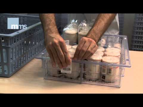 MMS - Cestas y Cubetas