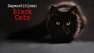 Superstitions: Black Cats