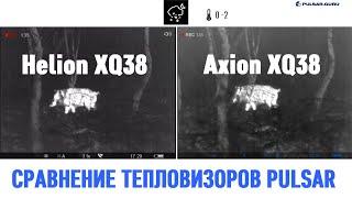 Сравнение Pulsar Helion XQ38 и Pulsar Axion XQ38