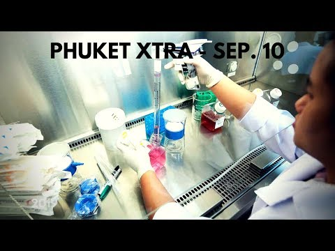 Phuket News | Phuket Newspaper, Phuket Events, Phuket Jobs