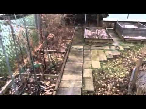 Thumbnail for Atheist Garden/Homestead Living
