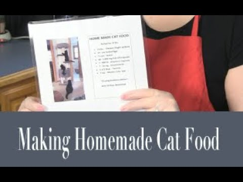 Purr View TV Show by Tonia Fleming Ep 005 'Making Homemade Cat Food'