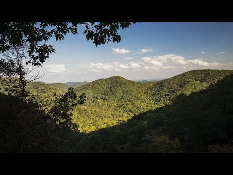 screenshot of youtube video titled The Nature Conservancy