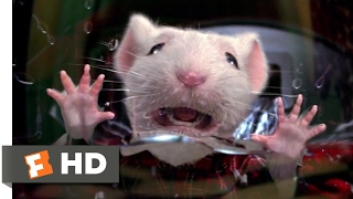 Stuart Little (1999) - Stuck in the Washing Machine Scene (2/10) | Movieclips