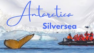 Luxury Antarctica Cruise by Silversea Expedition Guides