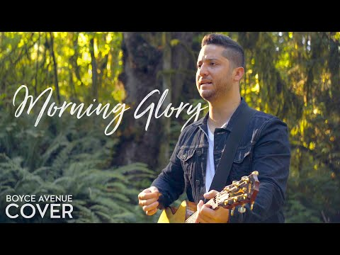 Oasis - Morning Glory (Boyce Avenue acoustic cover) on Spotify & Apple