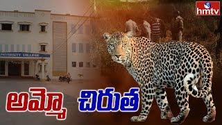 Leopard scares in Telangana University..