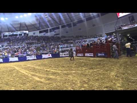 Through the eyes of... a bullfighter